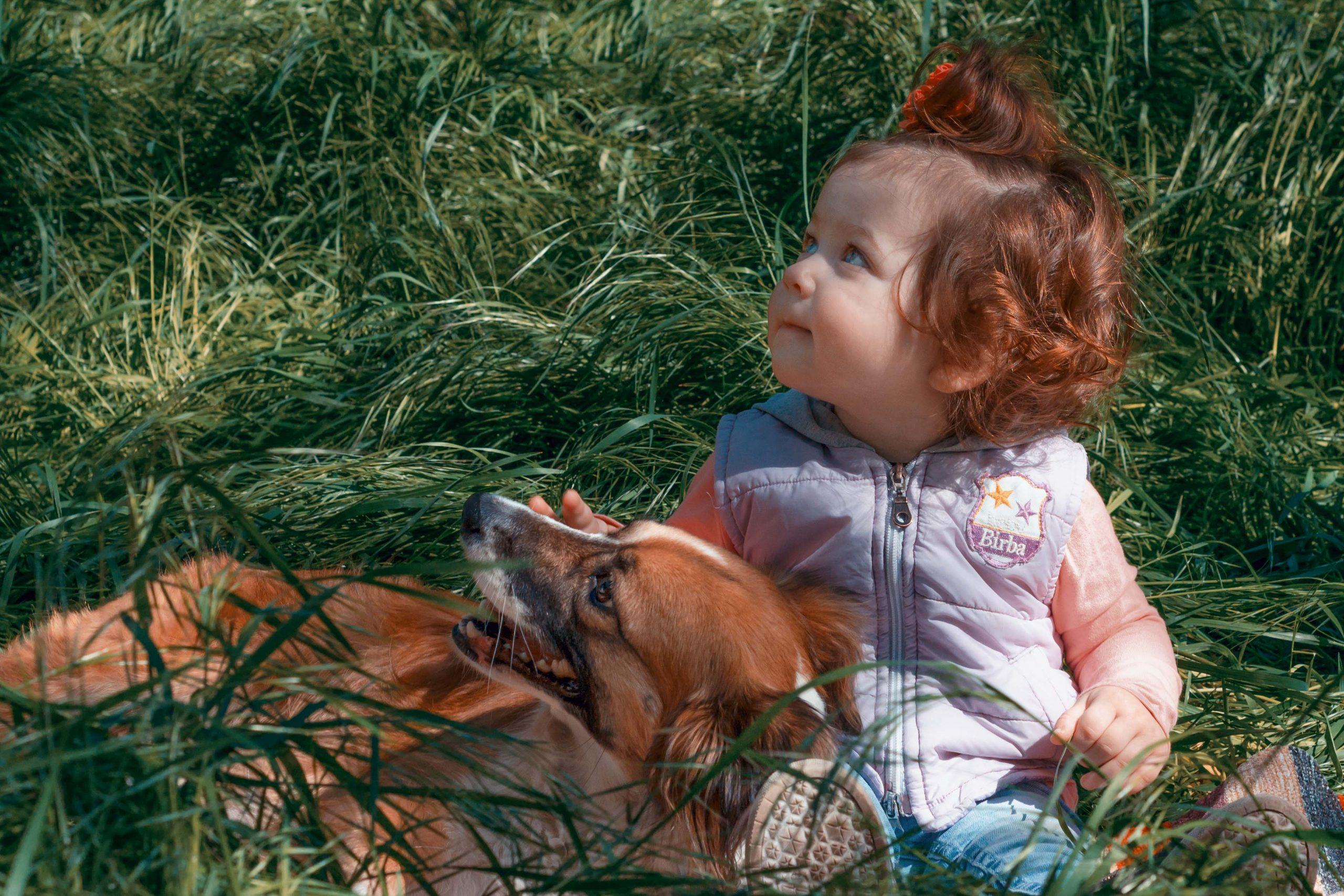 Фотосессия с собакой Мариуполь