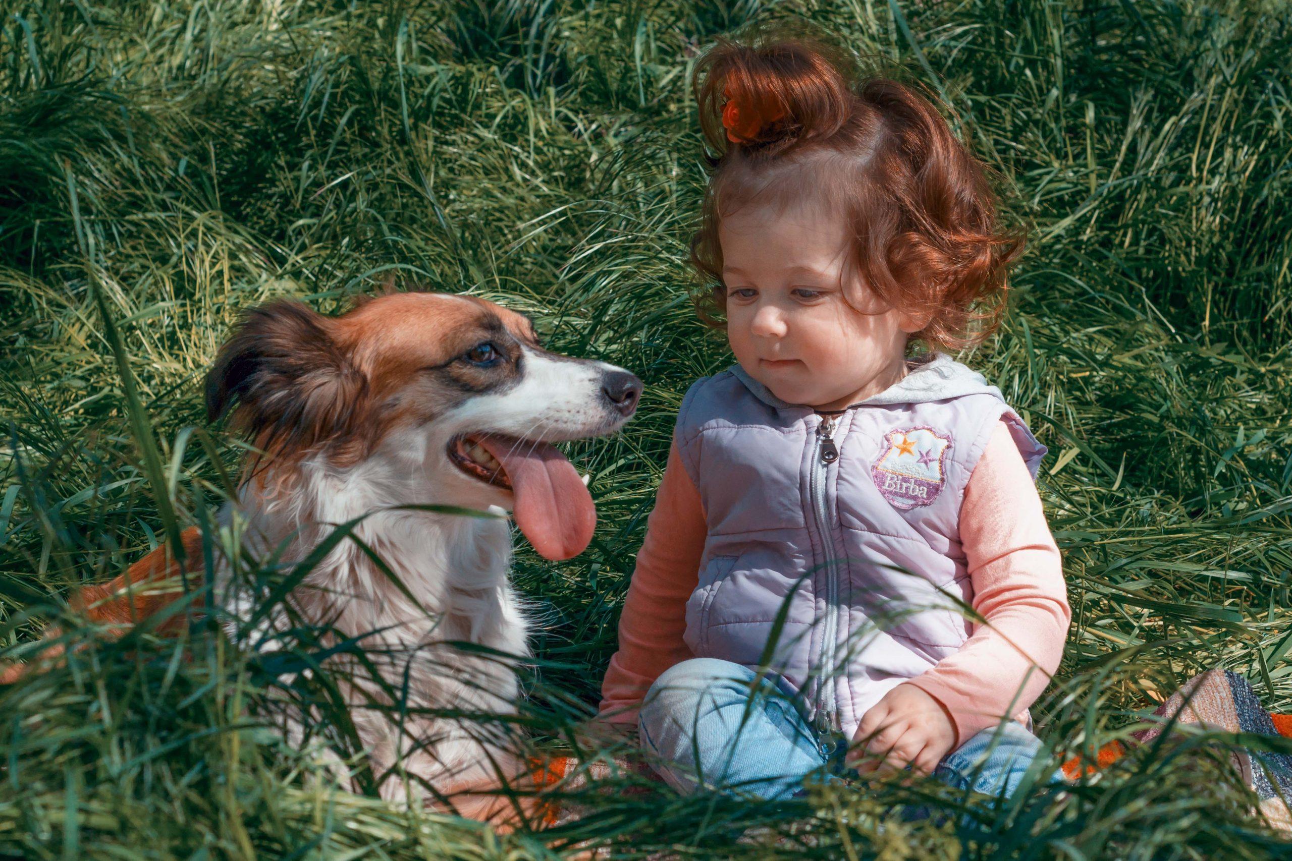 Фотосессия ребёнок и собака