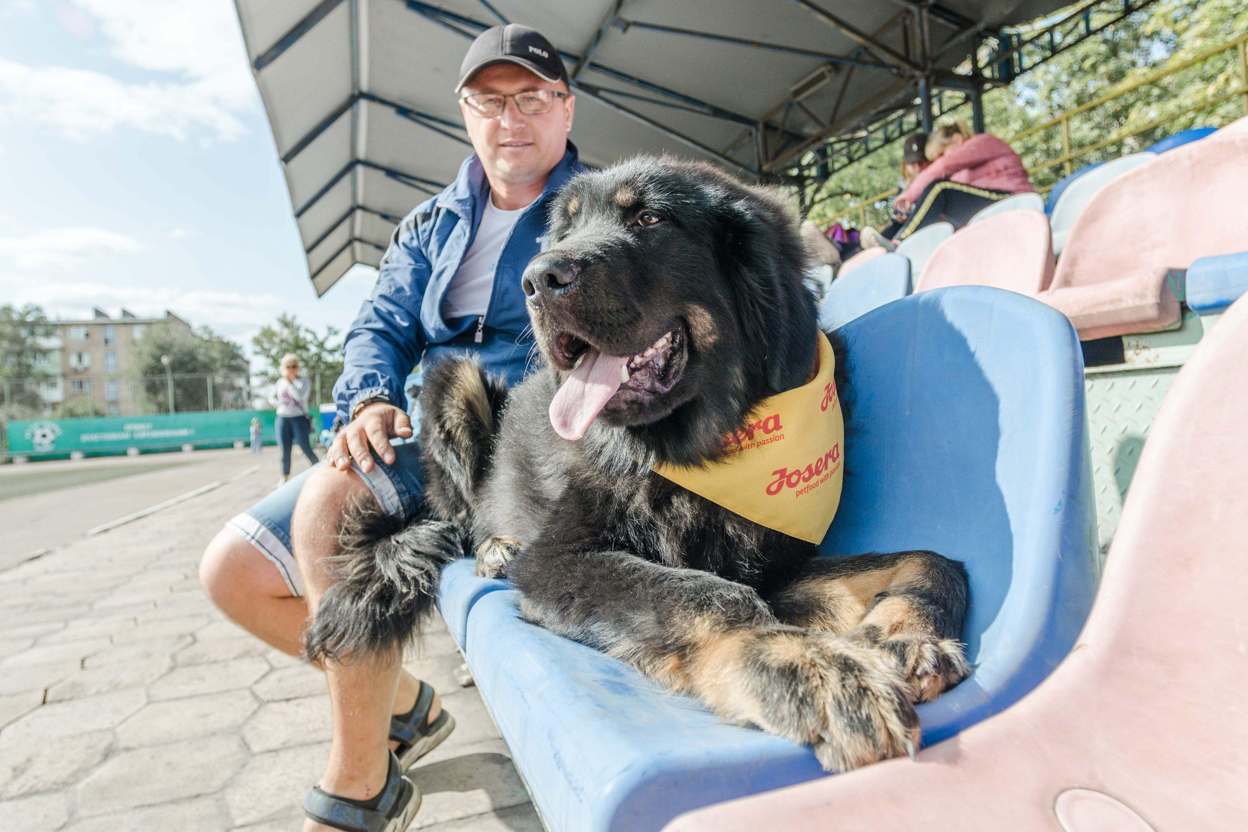 Фотограф собак на выставке в Мариуполе